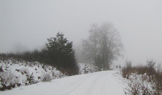 Droga z Długiego na Przełęcz Długie.