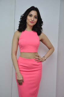 Actress Tamanna Stills in Pink Dress at Oopiri Movie Interview  0059.jpg