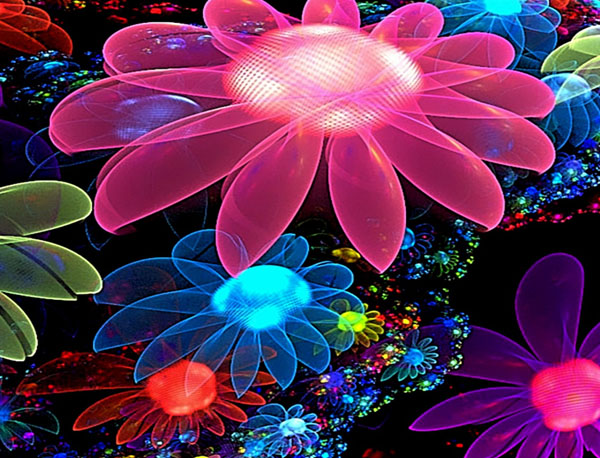 Free Colorful Flower Desktop Wallpaper: Colorful Background Wallpapers