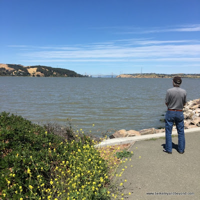 waterfront in Benicia, California