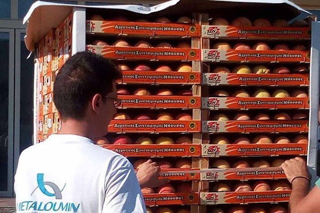 Διάθεση δωρεάν ροδάκινων στο Δήμο Επιδαύρου