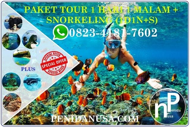 HARGA  PAKET TOUR NUSA PENIDA 1H1N  SNORKELING