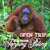 [Open Trip] Paket Tour Murah Taman Nasional Tanjung Puting (3H2M)