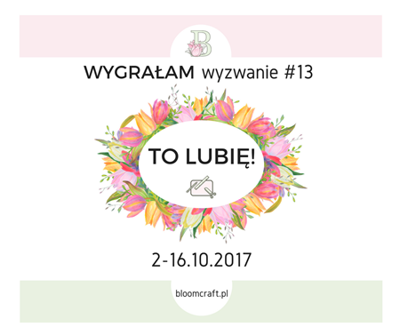 http://bloomcraft.pl/2017/10/17/wyniki-wyzwania-13-lubie/