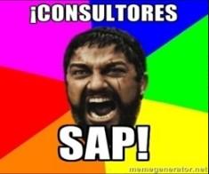 Consultores SAP - Consultoria-SAP
