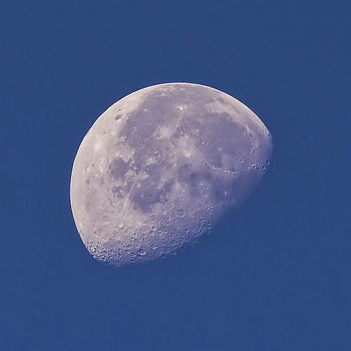 القمر نهارا