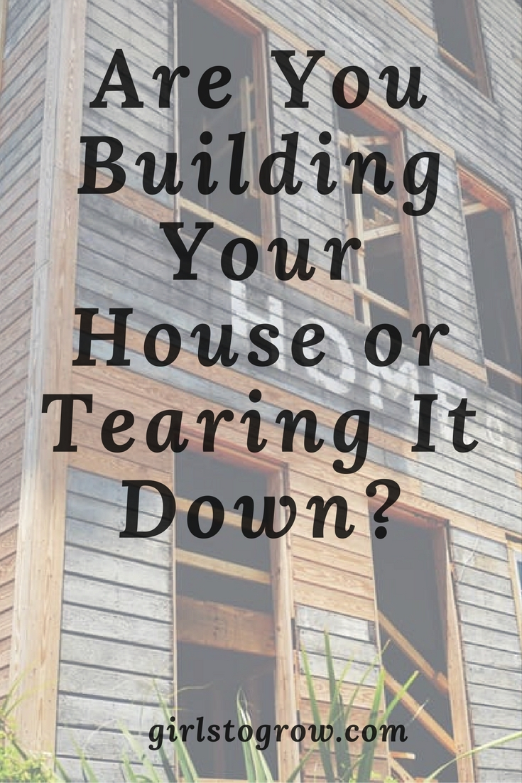 Let's look at what it takes to build a house, and, in contrast, how we  might be tearing it down.