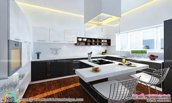 Contemporary style Kitchen interior