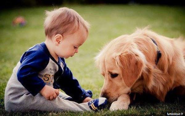 Image bébé garçon avec son chien