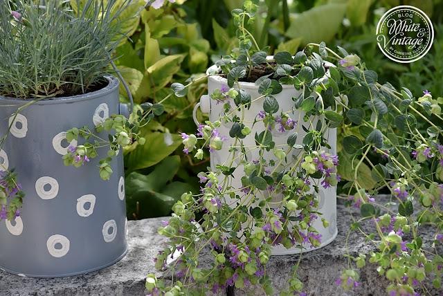 Dekorative Pflanzgefäße selbermachen