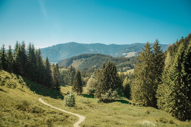 Wanderung Saalfelden Leogang Passauer Hütte - Salzburgerland 13