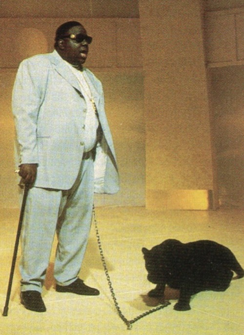 biggie smalls notorious b.i.g leopard