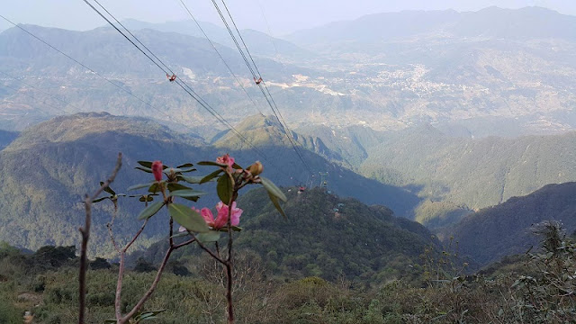 New Fun Experience - The Conquer Fansipan Peak By Cable Car 1