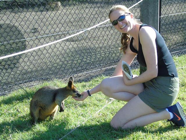 Symbio Sydney Australia