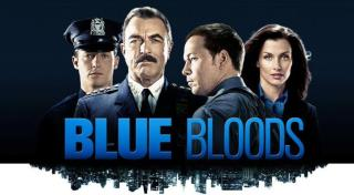 Download Blue Bloods Season 1-8 Complete 480p All Episodes