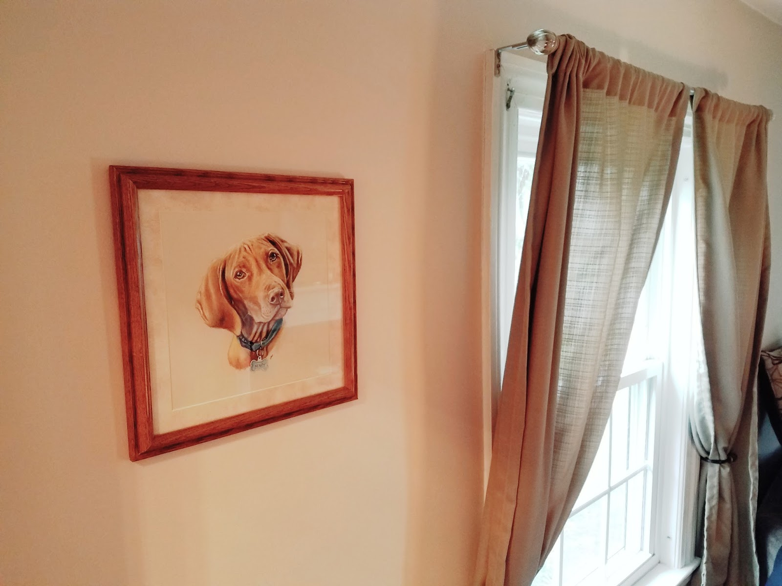 Giveaway Guy Custom Pet Portraits By Gillian Ussher