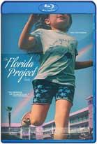 El Proyecto Florida (2017) HD 720p Latino