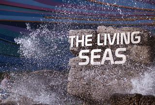 EPCOT's Living Seas Pavilion ~ Photo ©Disney