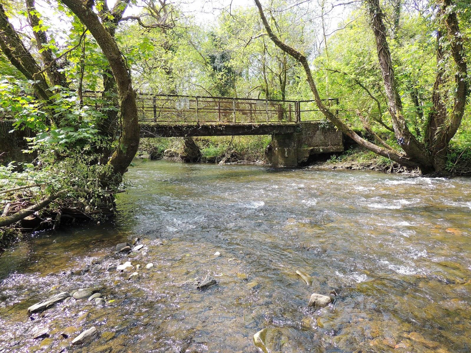 Llynfi Valley Nature   Llynfi River