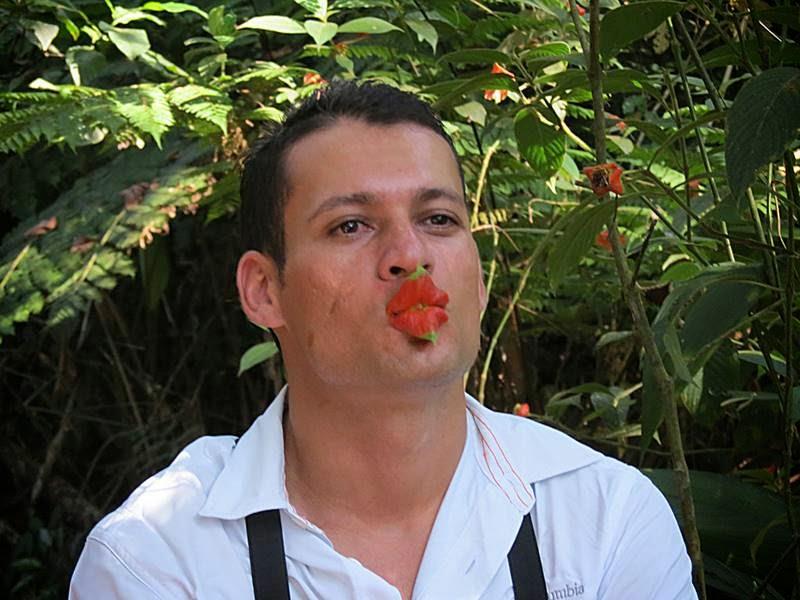 Psychotria Elata, Hot lips plant, Lip Flower, Lip Plant, Psychotria Poeppigiana, Psychotria Elata Lips, Kissing lips flower