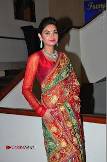 Model Sharon Fernandes Stills in Red Saree at Trendz Exhibition Launch  0050.JPG