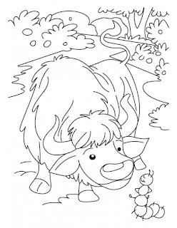 domestic animals coloring pages - photo#15
