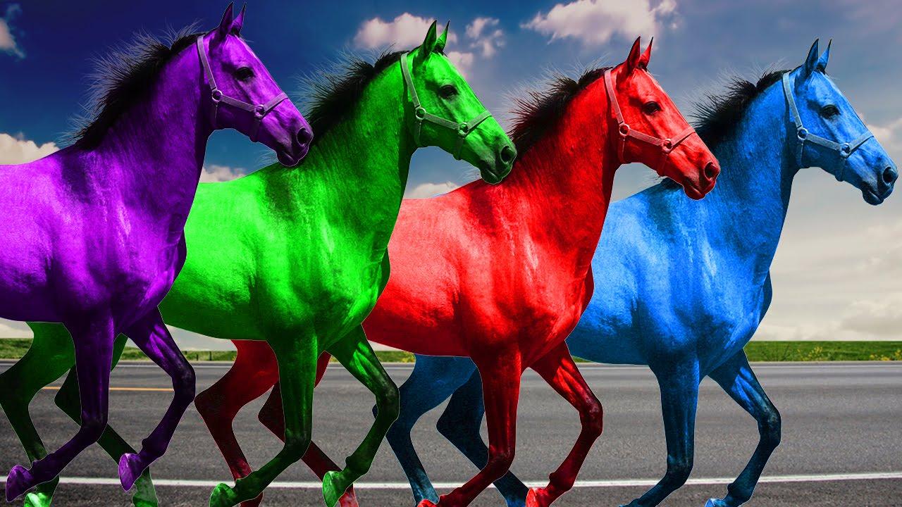 3D Horse Colours   Color Horse   Colours Rhymes For Children ...