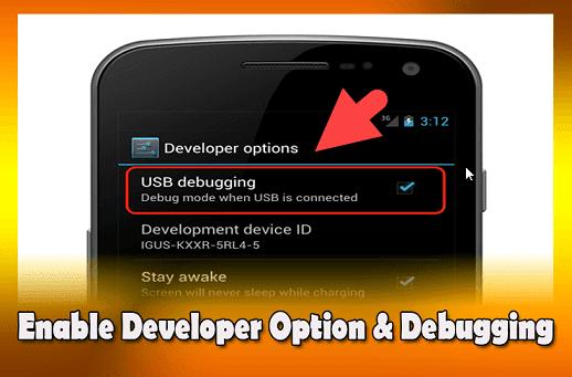 enable debugging mode in hindi