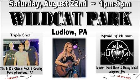 8-22 Wildcat Park, Ludlow, PA