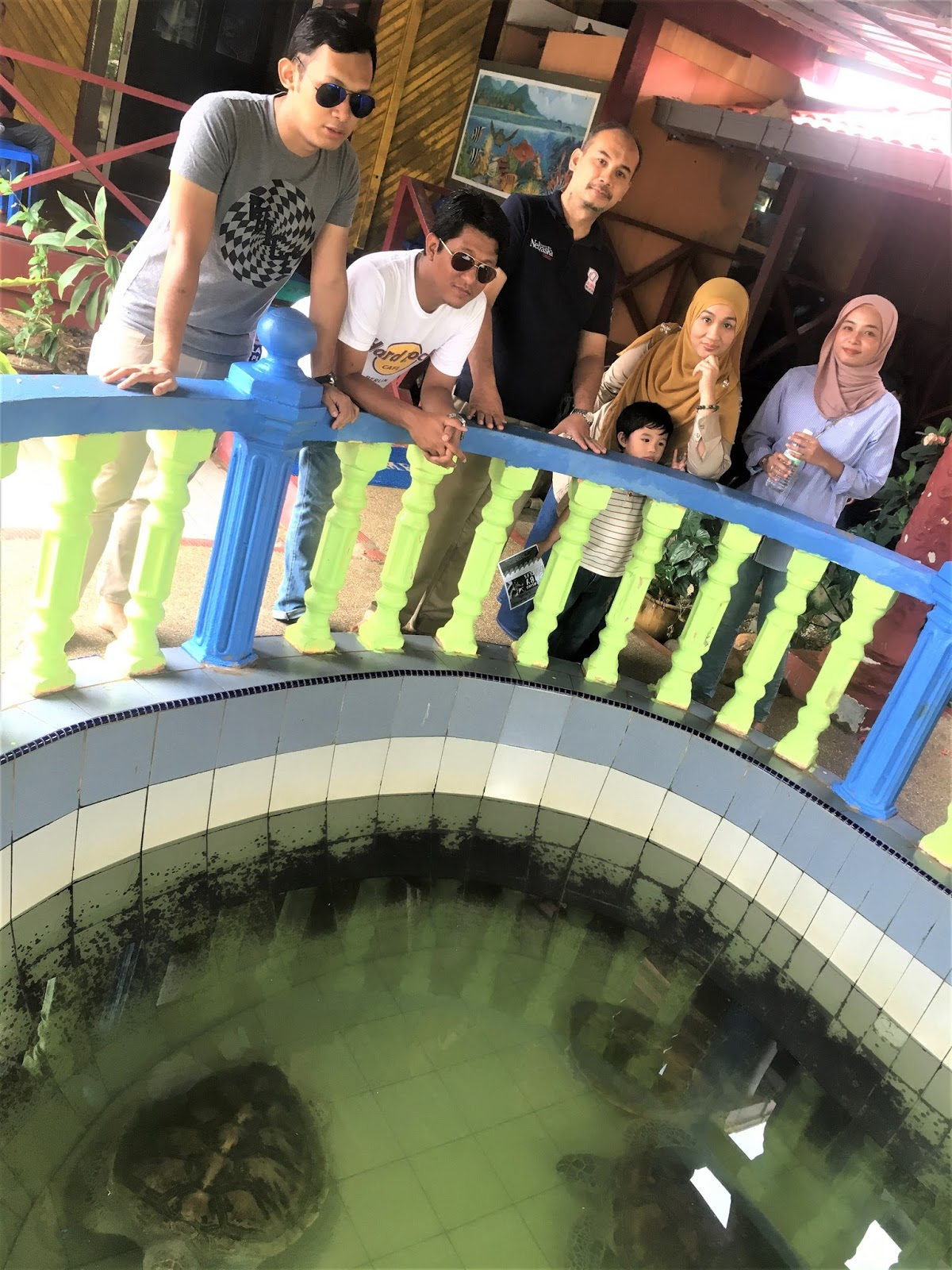 Visit Endangered Sea Turtles At  Pusat Konservasi Dan Penerangan Penyu, Cherating Pahang