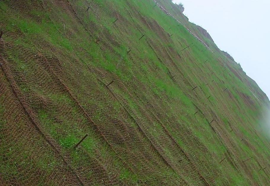 Coirgreen Www Coirgreen Com Using Coir Geotextiles For