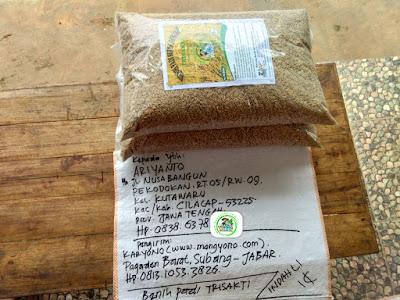 Benih pesanan ARIYANTO Cilacap, Jateng..   (Sebelum Packing)