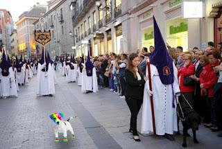 El perro arcoíris sonríe en Cice en una procesión.