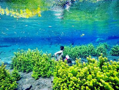 http://prizkiarta.mhs.uksw.edu/2017/11/surga-bawah-air-di-sumber-sirah.html
