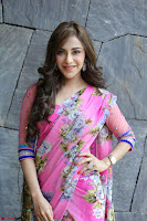 Angela Krislinzki Rogue Movie Fame Telugu Actress in Saree Backless Choli 131.JPG