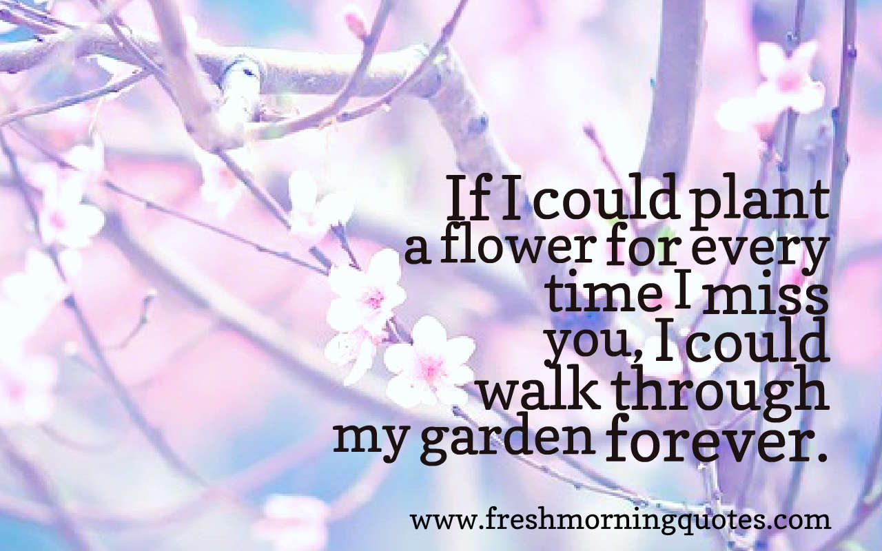 if i could plant a flower quotes images