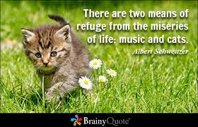 quotes cat there are two means of refuge from the miseries of life: music and cats.
