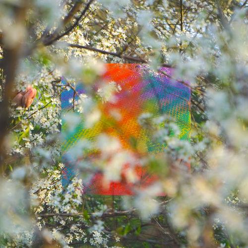 Four Tet - Teenage Birdsong - Single [iTunes Plus AAC M4A]