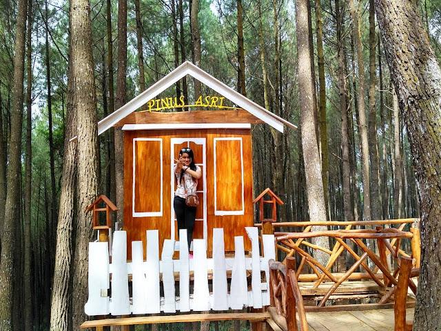 Gardu pandang hutan pinus asri Yogyakarta