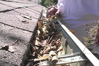 Pressure Wash & Cleaning gutters will help you avoid costly repairs