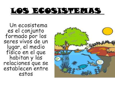 Creciendo Y Aprendiendo Ecosistemas Para Colorear