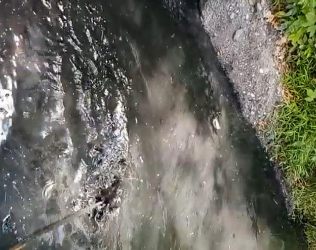 Limbah Pabrik Aspal di Rantetayo Mencemari Lingkungan, Air Sungai Jadi Hitam Pekat