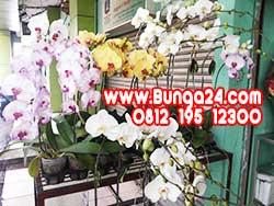 Toko Karangan Bunga dari Indonesia
