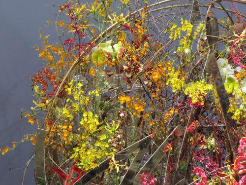 Philadelphia Flower Show 2019 - yellow