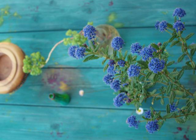 riciclo: tavolo dipinto a mano verde blu by Alessandra Fabre Repetto