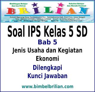 Soal IPS Kelas 5 SD BAB Jenis Usaha dan Kegiatan Ekonomi Dan Kunci Jawaban