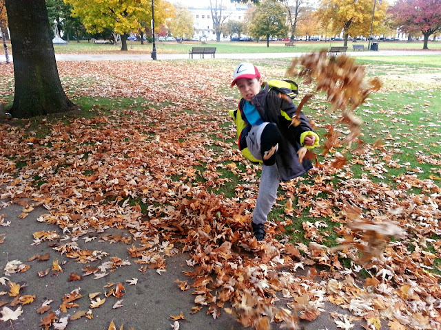 Boy kicking up a pile of leaves in a park