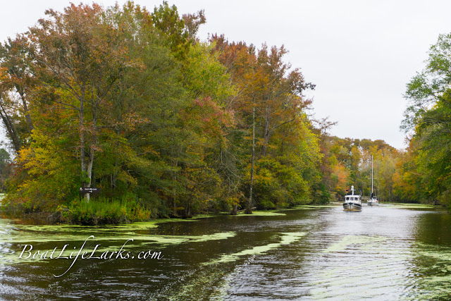 Boaters leave the Dismal Swamp Canal on a fall day