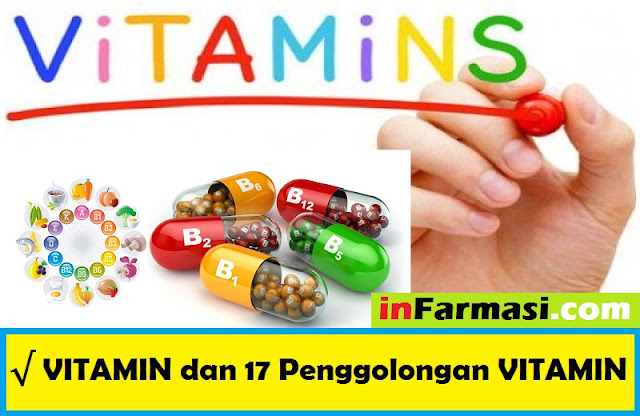 penggolongan vitamin