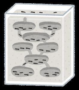 蟻の飼育ケースのイラスト(石膏)